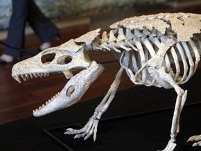 Палеонтологи нашли останки уникального крокодила-броненосца
