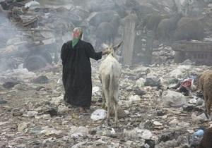 Arsenale-2012: Египетская художница устроит в Киеве перформанс под Ослиную симфонию