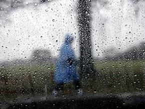 Шторм в Беларуси: более 450 населенных пунктов остались без света
