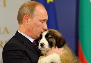 Россиянам предложили  выбрать кличку для новой собаки Путина