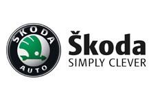 Подготовь свою Skoda к зиме за 120 грн на Автотрейдинг-СТО