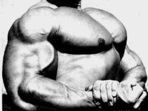 Исследование: большие мускулы разрушают иммунную систему