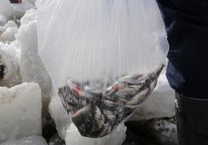 Экологи: Мертвая рыба в Киевском море может заразить воду в столице