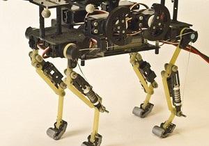 Новости науки: Швейцарцы сконструировали робокота