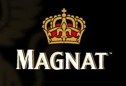 ТМ «MAGNAT» ОТКРЫЛА СВОЕ ПРЕДСТАВИТЕЛЬСТВО  В ИНТЕРНЕТЕ