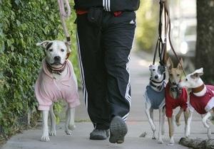 В Нью-Йорке примут закон о собачьих фекалиях