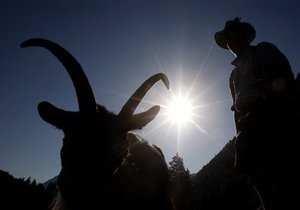 Австралийский суд оправдал козла-вредителя