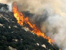 МИД Грузии заявляет об угрозе экологической катастрофы