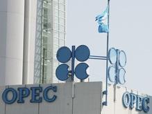 К 2020 году ОПЕК хочет добывать 9 млн баррелей нефти в день