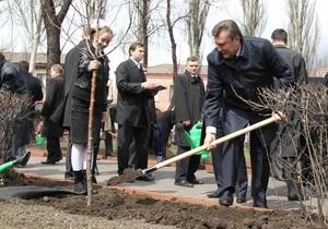 В Енакиево засохло дерево, посаженное Януковичем