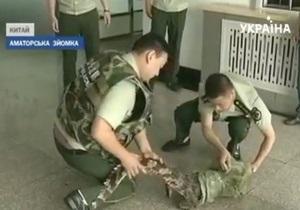 В Китае полицейские поймали на улице крокодила