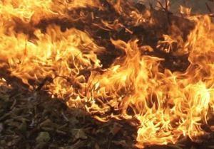 Пожары по неосторожности: в Запорожской области cгорело свыше 160 га стерни