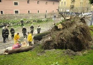 В результате урагана во Львове пострадали пять человек