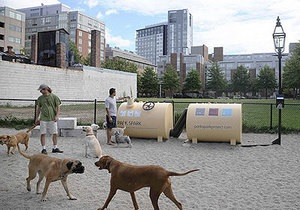 В США парк будут освещать с помощью собачьих экскрементов