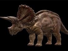 В Париже не нашлось желающих купить динозавра