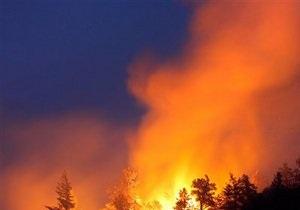 В Киевской области горело четыре гектара леса