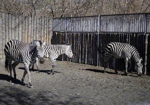 Киевский зоопарк меняет график работы