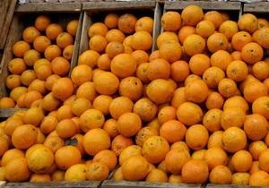 Скоро Новый год: Украина уменьшила пошлину на грузинские мандарины