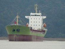 К бедствующему  Lehmann Timber направляется американское судно