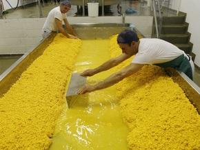 Рынок сыра консолидируется с рынком цельномолочной продукции
