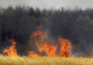 В Украине за сутки от пожаров выгорело свыше 625 га леса