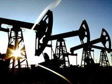 Нефть за один день подорожала на 3,5%