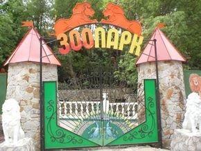 В ялтинском зоопарке отравили более десяти животных