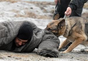 Московский метрополитен намерен защитить пассажиров с помощью собак