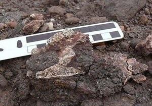 В Саудовской Аравии найдены останки неизвестного прежде общего предка мартышек и людей