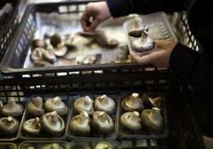 Повышенный уровень радиации обнаружили в японских грибах