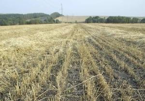 В этом году Украина собрала более 54 млн тонн зерна