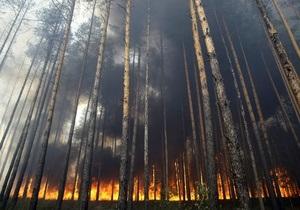 Площадь пожаров в лесах Сибири выросла до 37,5 тысяч гектаров