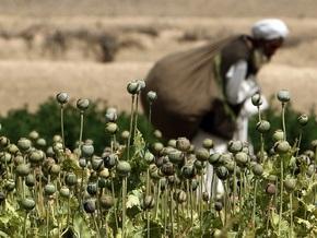 ООН констатировала резкое сокращение производства опиума в Афганистане