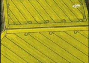 Фотограф Герхард Лаунер: с высоты птичьего полета