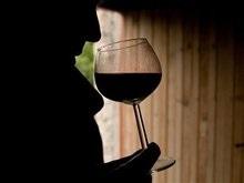 Французы хотят производить марочные вина в Украине