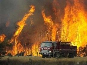 Число погибших в результате лесных пожаров в Австралии достигло 128 человек
