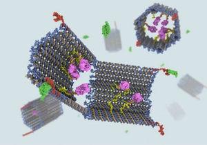 В США создали ДНК-робота для лечения рака