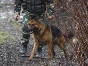 Украинской милиции не хватает собак для поиска наркотиков