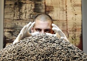 Сто килограммов семечек ушли с молотка за $560 тысяч