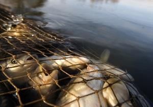 ЗН: Уровень радиации в рыбе Киевского водохранилища не превышает норму