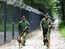 Британских служебных собак обуют перед входом в дома мусульман