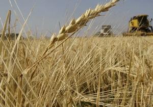 Украина за полгода экспортировала почти 10 млн тонн зерна - Минагрополитики