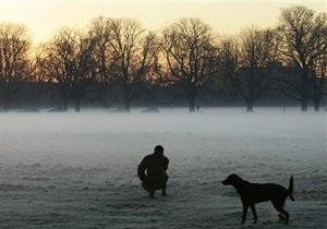 Новости Великобритании: В Великобритании собаководы жалуются на маргинализацию собак