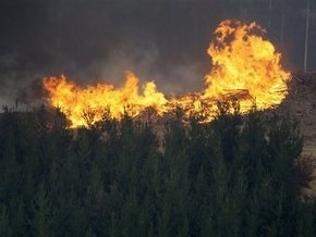 Австралия готовится к худшему: жертвами пожаров стали 131 человек