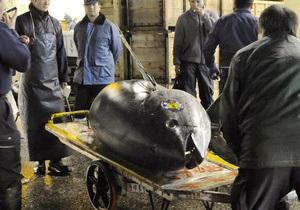 Гигантский тунец продан в Токио за рекордные $400 тыс.
