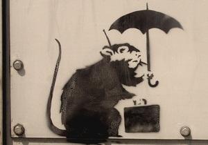 В Мельбурне похитили крысу с чемоданом