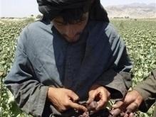 ООН: За последние три года производство наркотиков удвоилось