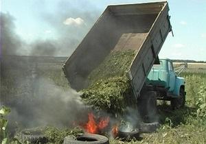 В Харьковской области изъяли конопли более чем на миллиард гривен