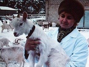 На Московской ферме козы будут производить человеческое молоко