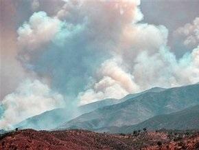 Виновниками крупных лесных пожаров в Калифорнии стали наркоторговцы